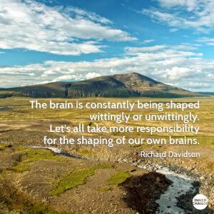 Quote from Richard Davidson The brain is constantly being shaped wittingly or unwittingly. Let's all take more responsability for the shaping of our own brains.