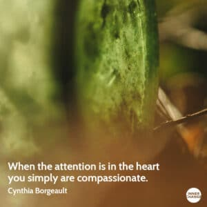 Quote from Cynthia Borgeault When the attention is in the heart, you simply are compassionate.