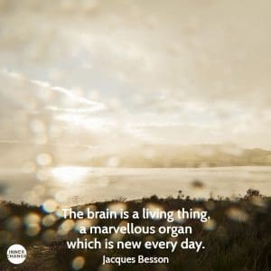 Quote from Jacques Besson The brain is a living thing, a marvellous organ which is new every day.